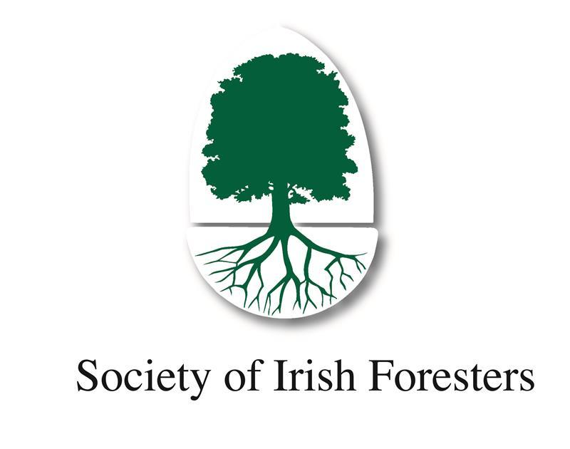 Logo - SIF.jpg