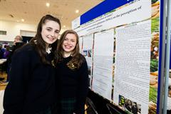 SciFest@College Entry Guidelines